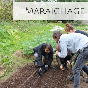 Teambuilding maraichage jardin nature